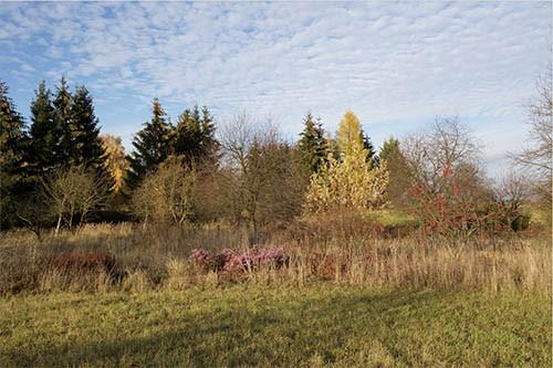 Herbstlandschaft Uckermark